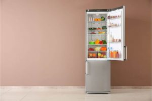 6 Basic Cleaning and Maintenance Tips for Refrigerators